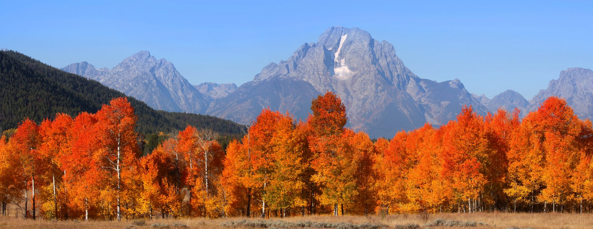 Fall in Jackson Hole